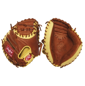 Catcher's Glove
